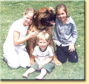 Sakie, south african boerboel and kids